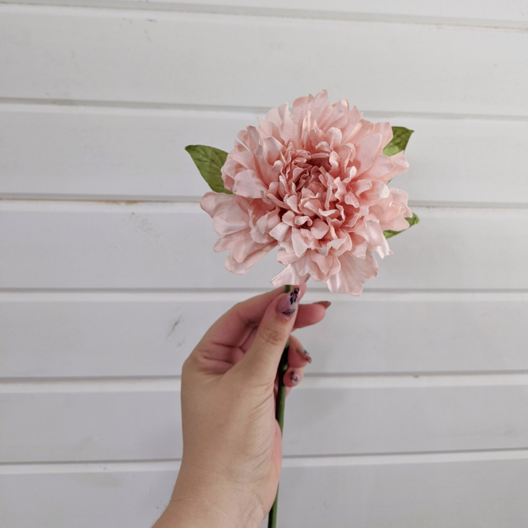 Dahlia- paper flower - single stem - Light Pink _sola_wood_flowers