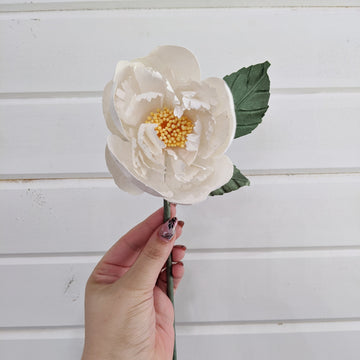 Tree Peony  - paper flower - single stem - white _sola_wood_flowers