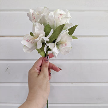 Peruvian Lily - paper flower - single stem - white _sola_wood_flowers