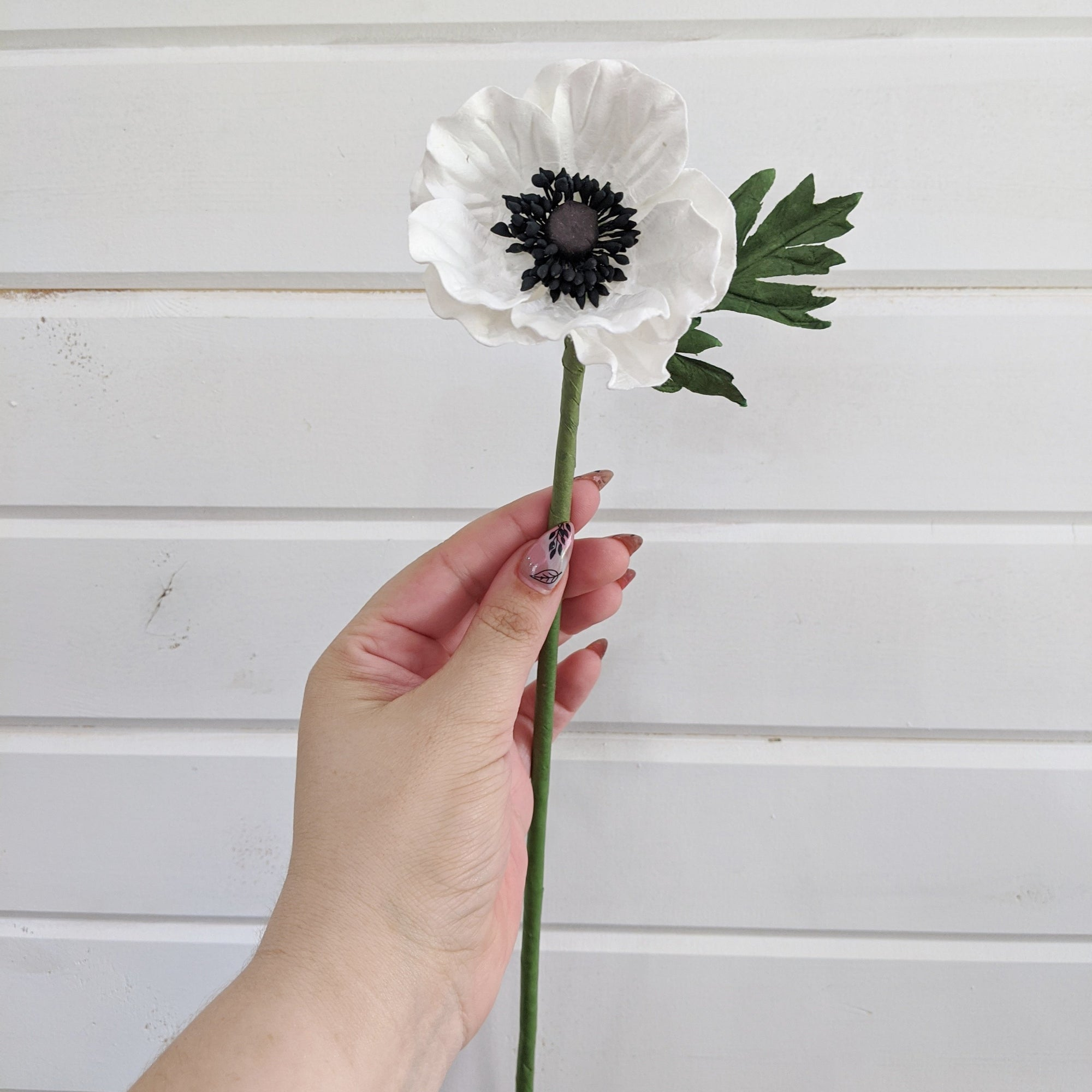 Anemone- paper flower - single stem - white _sola_wood_flowers