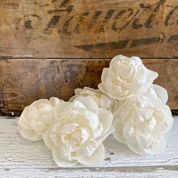 Stella- 3 inch - Set of 6 _sola_wood_flowers