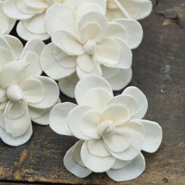Alice™ Flower  - set of 12-  2.5 inches _sola_wood_flowers