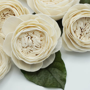 Cabbage Rose  - set of 12-  3 inches _sola_wood_flowers