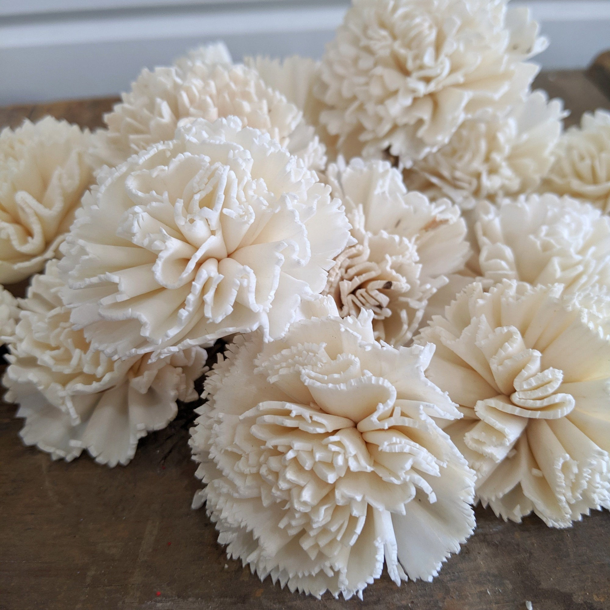 Carnation  - Bulk Wholesale 100 Pack - 1.5 inches _sola_wood_flowers