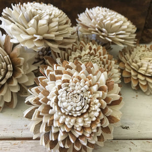 Cocoa™ Set of 12 - 1.5 inches _sola_wood_flowers