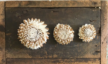 Cocoa™ Set of 12 - 2.5 inches _sola_wood_flowers