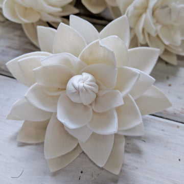 Dahlia - Set of 12- 2.5 inches _sola_wood_flowers