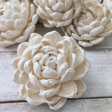 Dazzle™- set of 12 -  4 inches _sola_wood_flowers