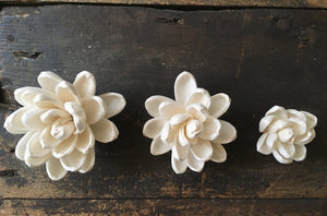 Elegance™- set of 12- 2.5 inches _sola_wood_flowers