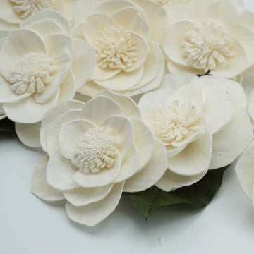 Grace™ Flower -3 inches- sold by the dozen _sola_wood_flowers