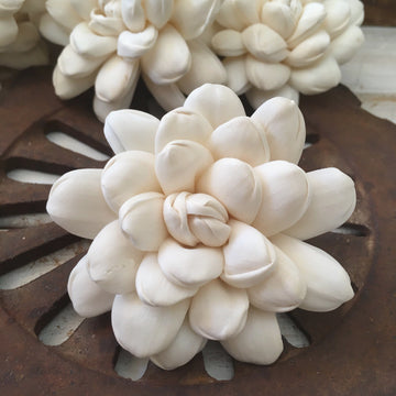 Halo™ Flower  - set of 12- 2.5 inches _sola_wood_flowers