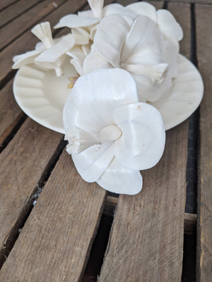 Hibiscus - set of 12 - 2.5 inches _sola_wood_flowers