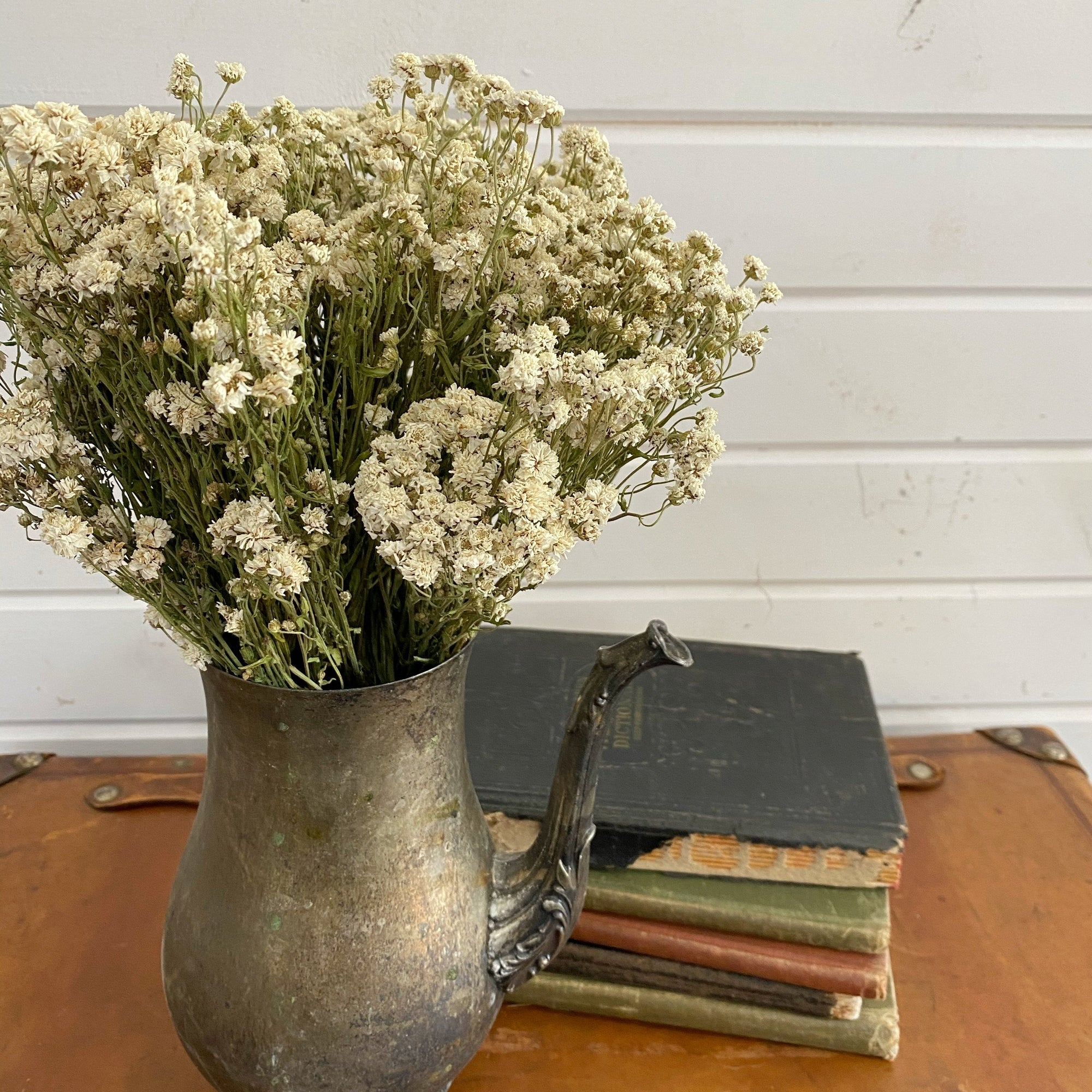 Achillea of Pearl - Dried/Natural _sola_wood_flowers