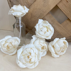 Blooming Peony - with wick - set of 6