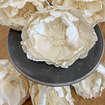 Charleston™ set of 6 - 4 inches | Perfectly Imperfect _sola_wood_flowers