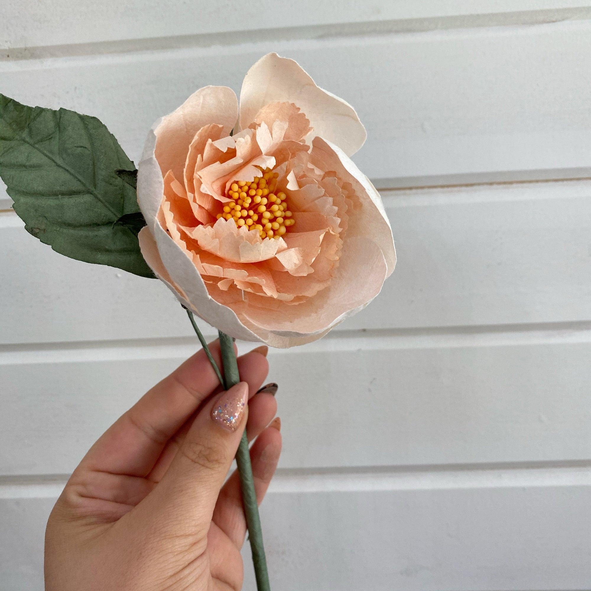 Tree Peony  - paper flower - single stem - cream and peach _sola_wood_flowers