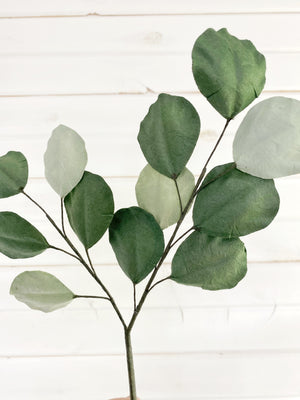 Multi-tone Silver Dollar Eucalyptus -single stem - handcrafted paper greenery