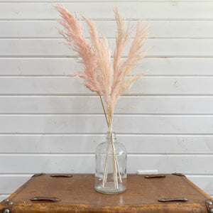 Pampas Grass- Light Pink _sola_wood_flowers