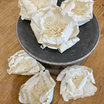 Charleston™ set of 6 - 3 inches | Perfectly Imperfect _sola_wood_flowers