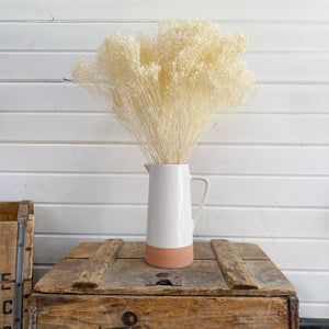 Broom Bloom - Bleached _sola_wood_flowers