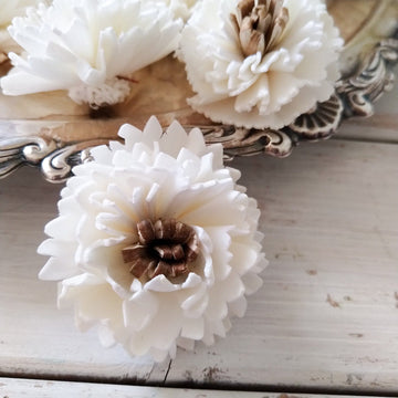 Latte™  - set of 12-  1.5 inches _sola_wood_flowers