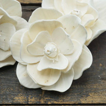 Magnolia Flower  - set of 12 - 1.5 inches _sola_wood_flowers