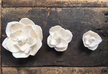 Magnolia Flower  - set of 12 - 2.5 inches _sola_wood_flowers