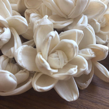 Mini Blossom™ Flower  - set of 12-  1.5 Inches _sola_wood_flowers