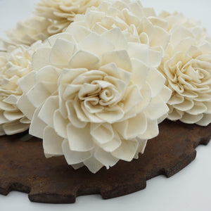 Miss Ivy™- set of 12 - 2.5 inches _sola_wood_flowers