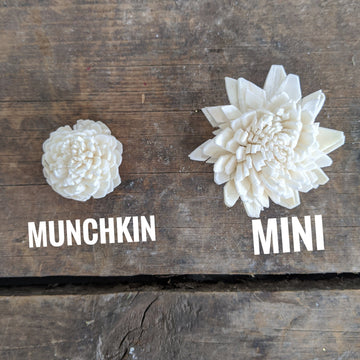 Munchkin Assortment™ set of 50 _sola_wood_flowers