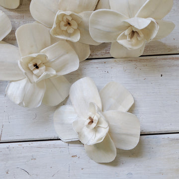 Orchid - set of 12 - 3 inches _sola_wood_flowers
