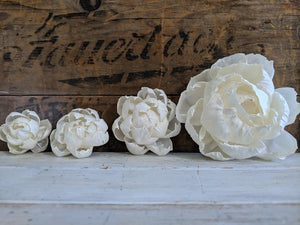Peony - 2 inch - Set of 12 _sola_wood_flowers