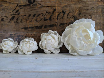 Peony - 3 inch - Set of 6 _sola_wood_flowers