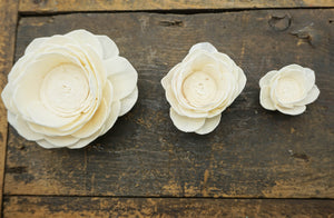 Poppy - set of 12 - 3 inches _sola_wood_flowers