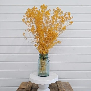 Sesame Bloom - Golden Yellow - Preserved and Colored- 4oz _sola_wood_flowers