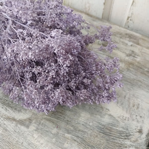 Sesame Bloom - Lilac - Preserved and Colored- 4oz _sola_wood_flowers