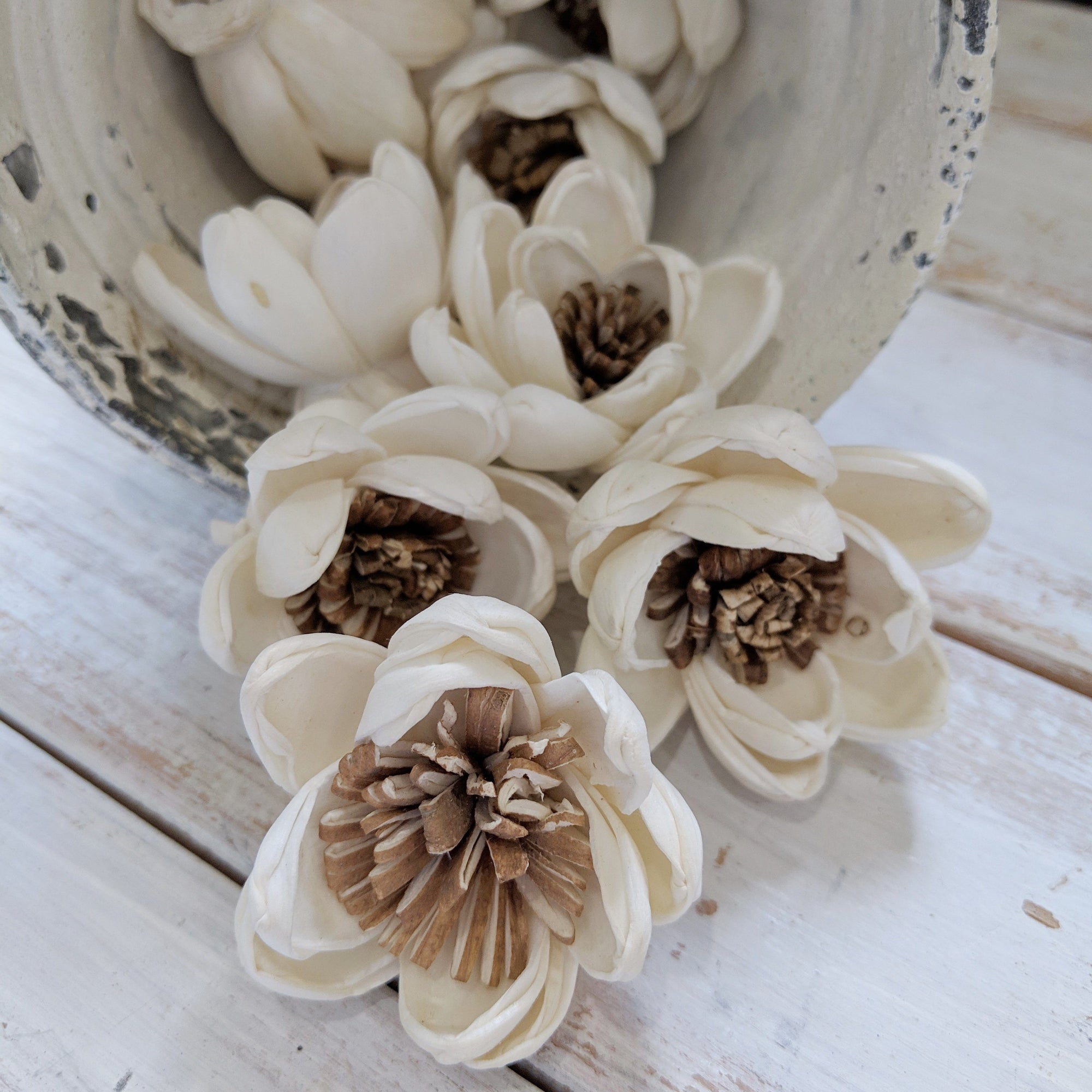 Spellbound™ Sola Flower  - set of 12-  1.5 Inches _sola_wood_flowers