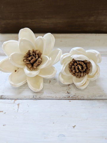 Spellbound™ Sola Flower  - set of 12-  2.5 Inches _sola_wood_flowers