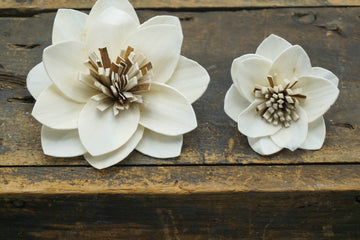 Twinkle - set of 12 - 4 inches _sola_wood_flowers