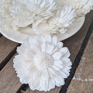 Wild Double Daisy™  set of 12-  2.5 inches _sola_wood_flowers