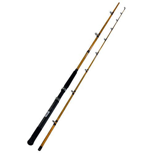 "Daiwa FT Trolling Rod - 9'6"" Length, 2 Piece Rod, 20-30 lb Line Rating, Medium-Light Power"