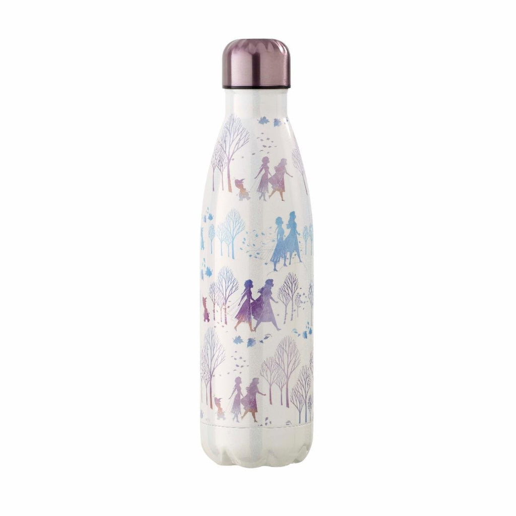 Disney Frozen Fearless Range Metal Water Bottle