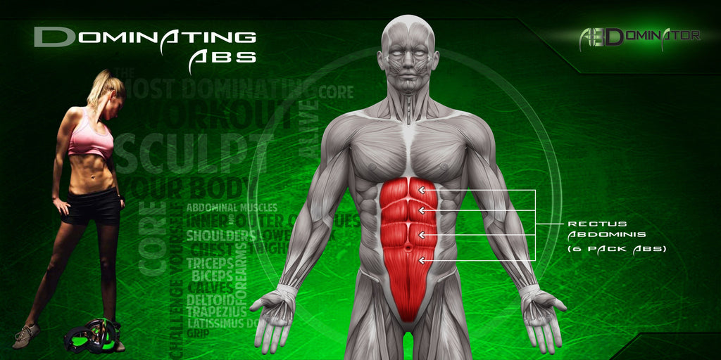 How The AbDominator Takes Your Core To The Next Level