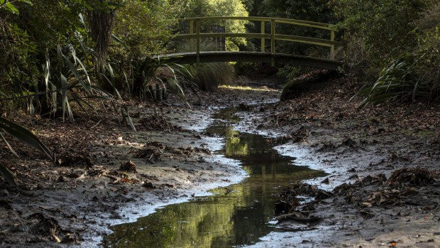 CHRISTCHURCH RIVERS LOWEST THEY'VE BEEN IN DECADES