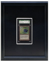Economy Plus Graded Trading Card Frame