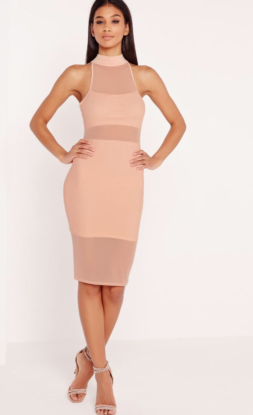 Chic Nude Mesh High Neck Dress - Candles Fashion House