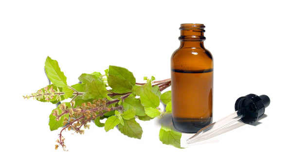 basil essential oil for fairness