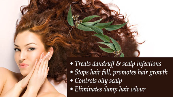 hair benefits of eucalyptus essential oil