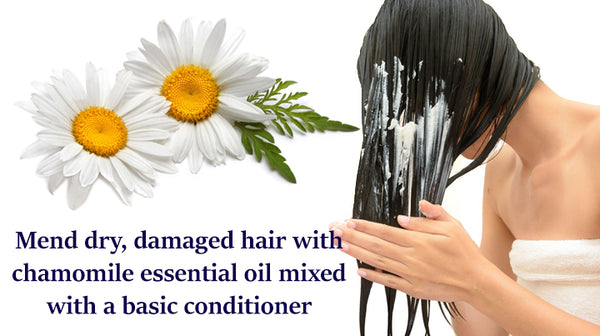 essential oil for dry hair