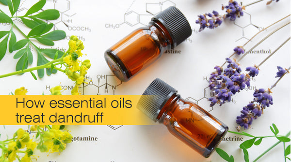 how essential oils help in treating dandruff